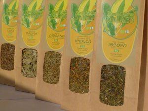 Vendita piante aromatiche biologiche
